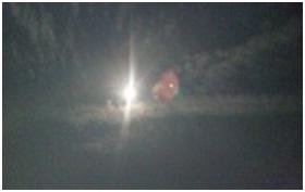 山口県防府市役所とは?生活安全課と防府保健所、犬捕獲担当職員獣医と公務員の嘘と妨害の数々!021