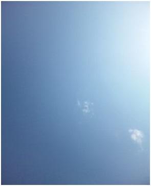 犬達のSOS金星と木星が大接近不思議な流れ星と海・姫ちゃんモーちゃん写真集携帯カメラマンミーママ001