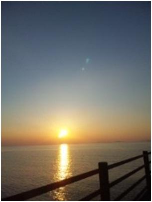 犬達のSOS金星と木星が大接近不思議な流れ星と海・姫ちゃんモーちゃん写真集携帯カメラマンミーママ011