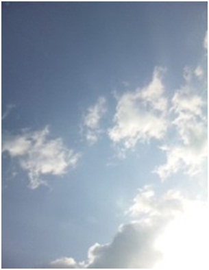 犬達のSOS金星と木星が大接近不思議な流れ星と海・姫ちゃんモーちゃん写真集携帯カメラマンミーママ047