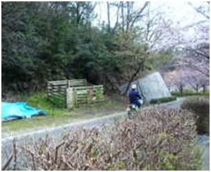 犬達のSOS・幻想的な桜夜に白鳥とサギ&ブータン国王と国民の真の優しさ・日本では祓い清めの春の嵐014