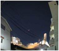 愛媛県庁の動物愛護推進計画に携わっておられるkさんへ、お礼とお詫び・犬達のSOS005
