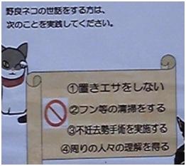 犬達のSOS・猫虐待多発の松山総合公園管轄の松山保健所木村獣医さんへアグネスより003