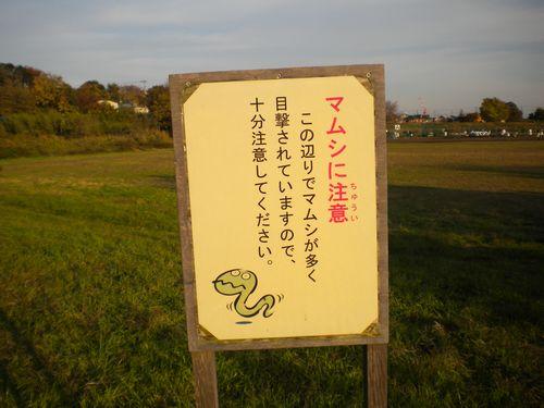 05_マムシ注意