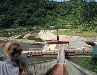 ヤナ公園1