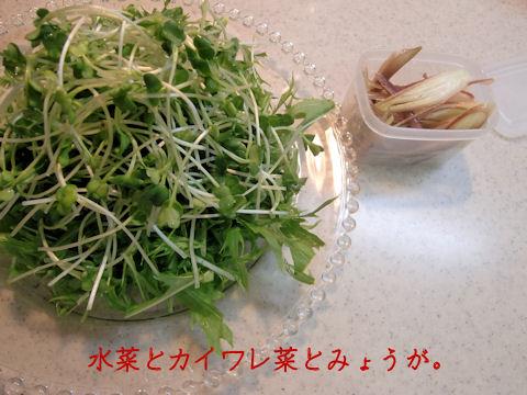 野菜たっぷり~~~