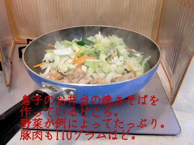 ほぼ野菜炒め状態。
