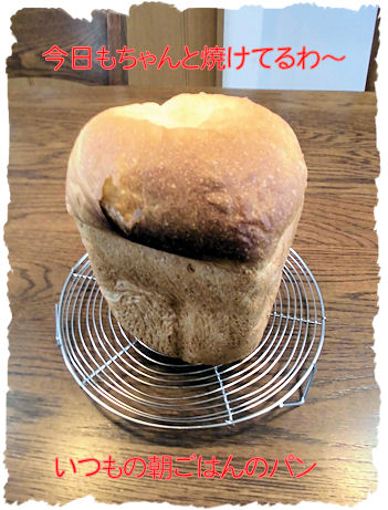 タイマー。パン