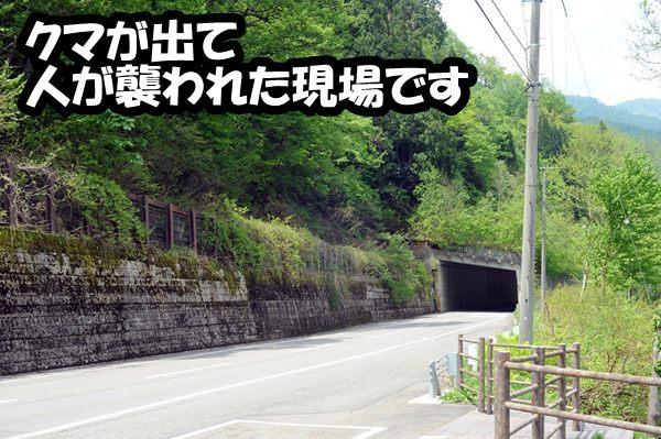 DSC_9167.jpg