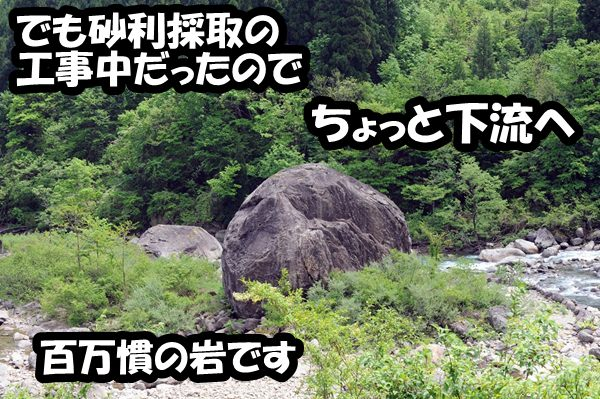 DSC_9172.jpg