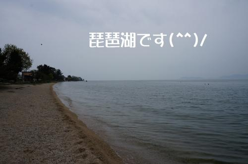 DSC04720_convert_20120430180840.jpg