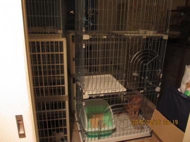 2012.08.16-4 nao yuki