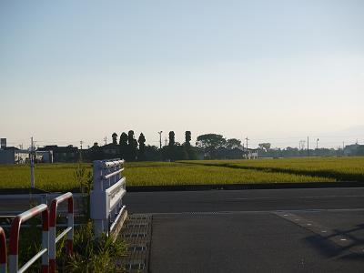 kiji_24_8_21_fuukei1.jpg