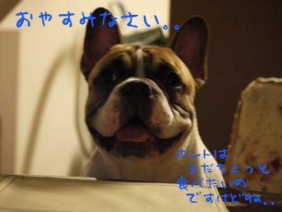 kiji_24_8_22_reo1.jpg