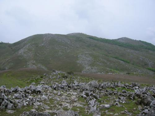 霊仙山山見えた