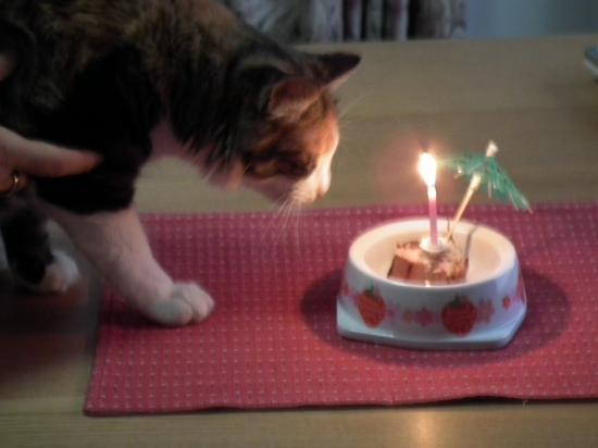 ranko-birthday+017_convert_20120716211807.jpg