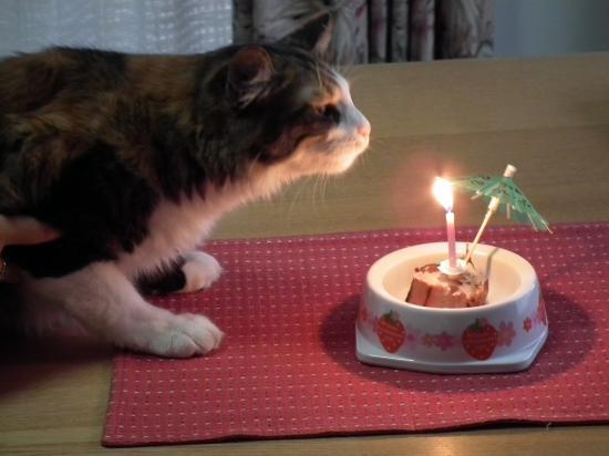 ranko-birthday+018_convert_20120716211655.jpg