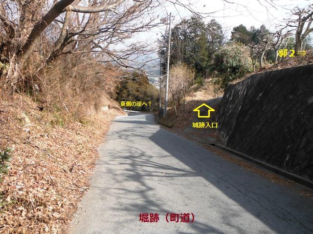 吉田南城(高森町) (1)