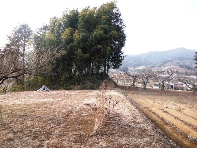 城山城(高森町) (40)