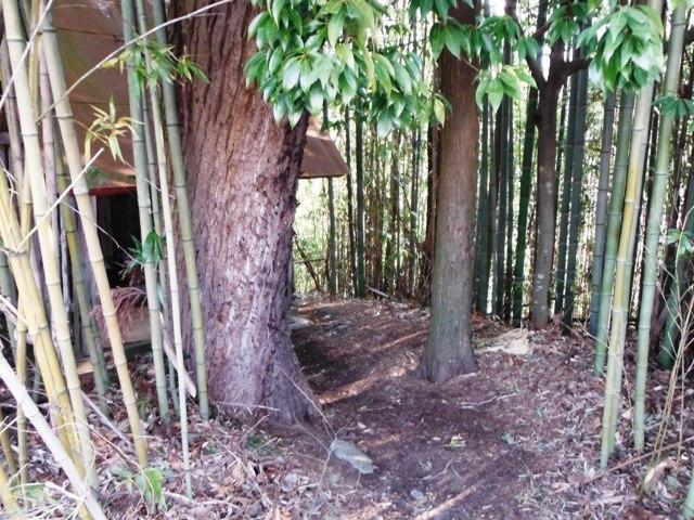 北の城(松川町) (22)