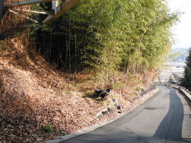 北の城(松川町) (6)