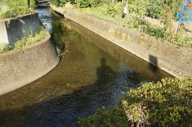 上田用水のとある流れ2