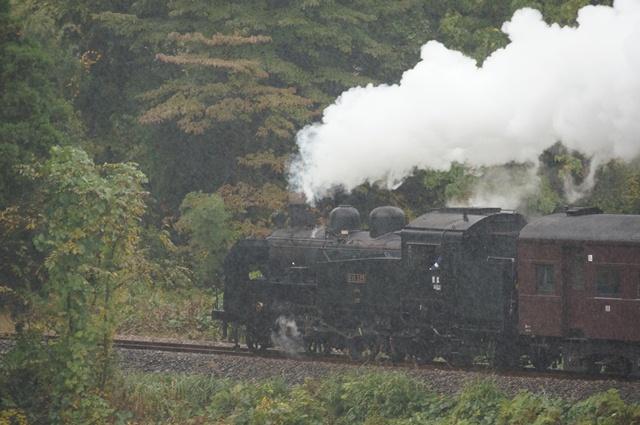 飯山線を走るC11 325号機