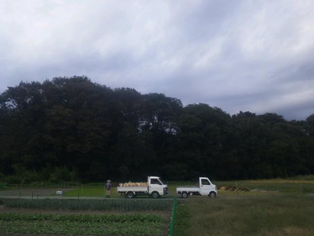 働くマツダのトラックたち