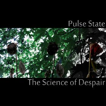 Pulse_state-The Science Of Despair