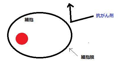 WS000002_20120920225008.jpg