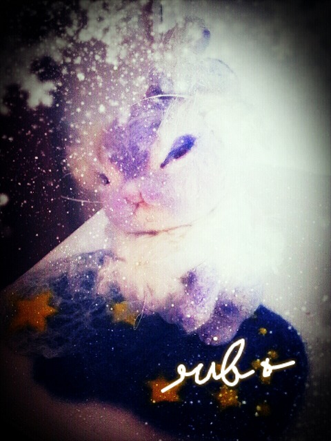 2012-12-29-01-59-14_deco.jpg