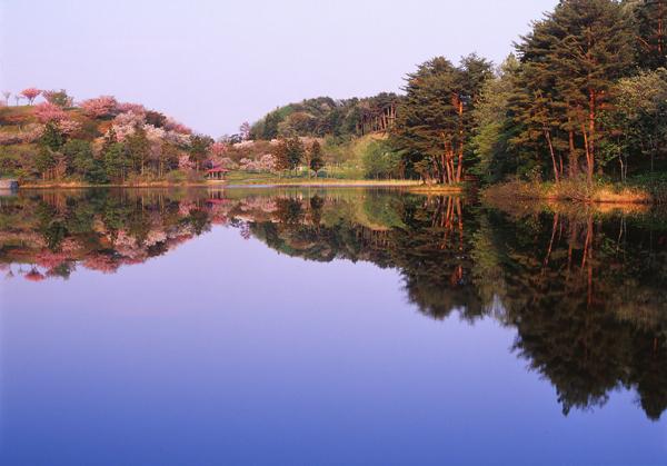 2012.05.07日本国花苑01b