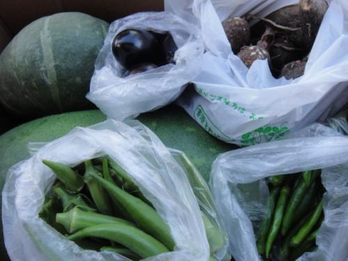 09 2012  母の実家より新鮮野菜 (日本)