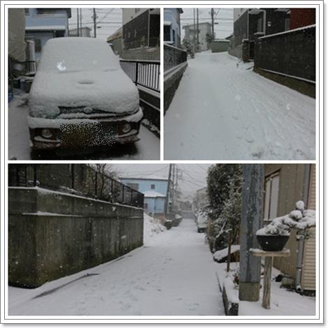 2月8日雪