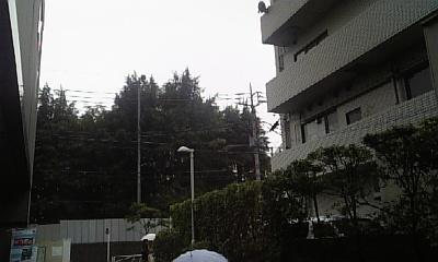 DVC00166_20120613084944.jpg