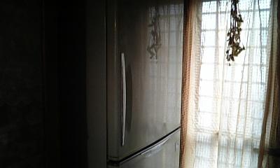 DVC00244_20121124160841.jpg