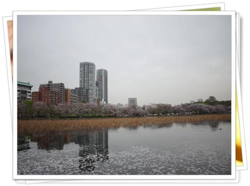 20120427-07.jpg