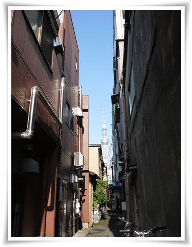 20120528-03.jpg