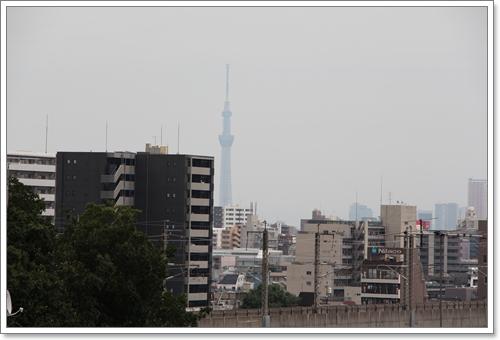 20120702-05.jpg