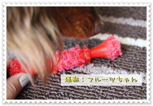 20120810-07.jpg