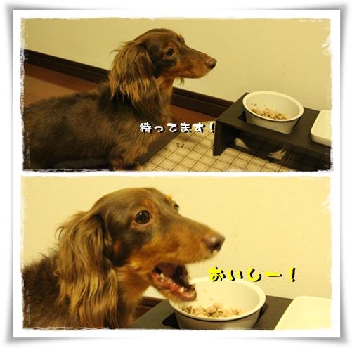 20120813-03.jpg