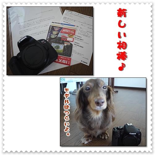 20120819-08.jpg