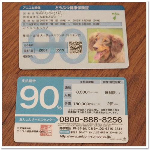 20120909-04-01.jpg