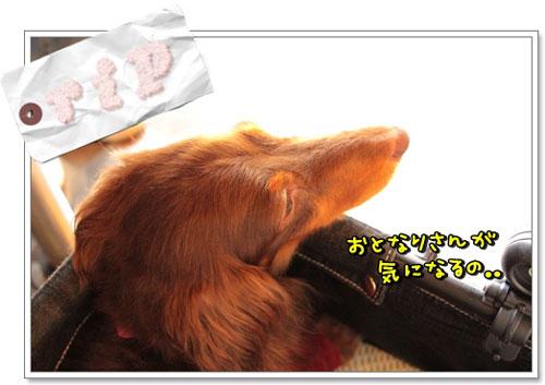 20120921-022.jpg