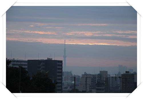 20121020-02.jpg