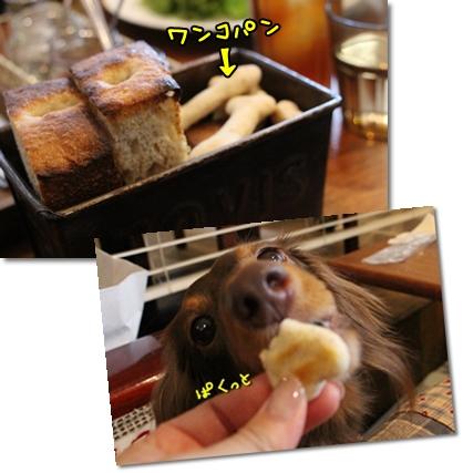 20121114-07.jpg