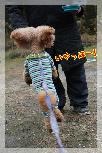 2_20121227201111.jpg