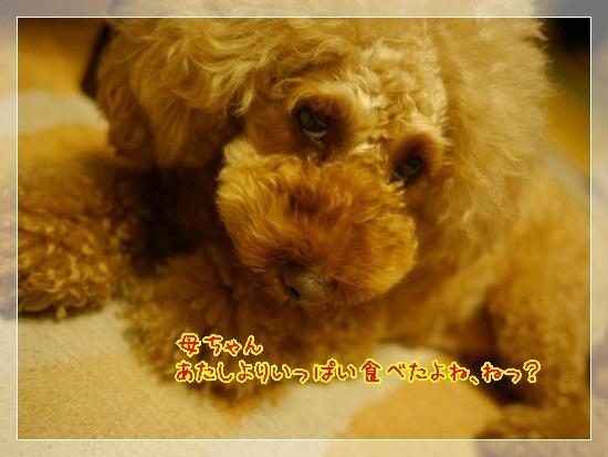 7_20121009221517.jpg