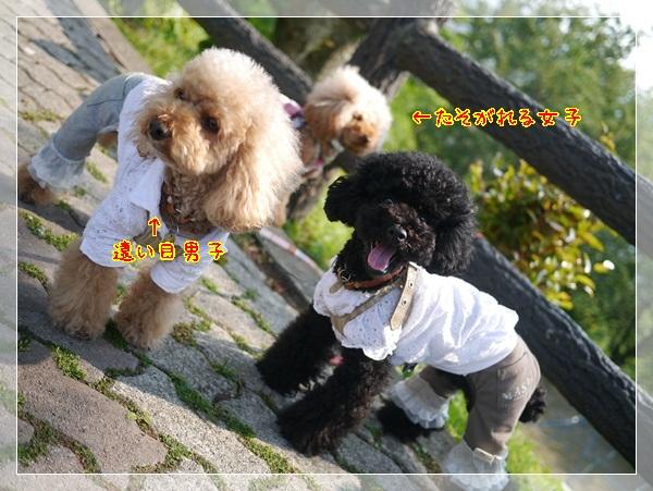 b11_20120513024255.jpg