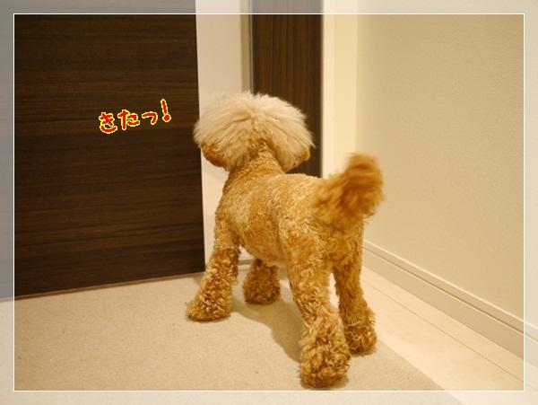 b3_20120524225837.jpg
